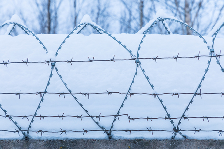 Barbed wire and the snow 免版税图像