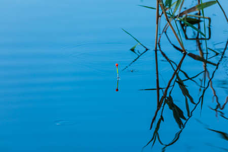 Tall fishing vivid or colorful float with bug or beetle and cane or reed on the blue water surface of lake, river or pond in bright sunny day