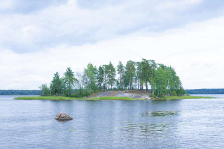 The island or isle with pines spruces and birches surrounded by green canes or reed and alone granite stone or rock among the water of sea or ocean bay. The north landscape, scene or view in bright vi