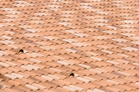 a large red tiled roof in the summer sunlight photo