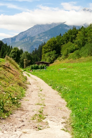 clay stone road in jungle: country road near a meadow with a backdrop of mountains and blue in summer Journal
