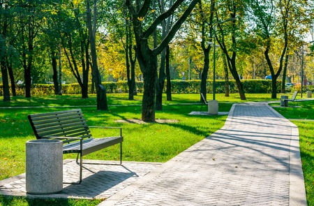 walk in the park: bench near the path of pavers in a quiet city park early autumn on a sunny day
