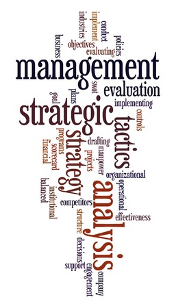 Words cloud with strategic management related words Vector
