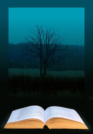 Digital art: open book and knowledge tree; photo collage photo