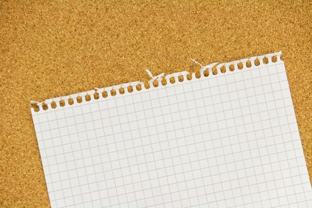 Teared notebook sheet with ragged irregular edges on cork background Stock Photo - 7436071