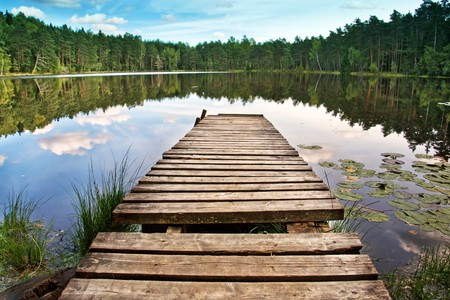 Wooden dock on beautiful forest lake photo