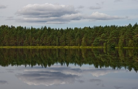 Mirror reflection of the forest on the lake Stock Photo - 7435865