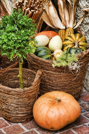 Different pumpkins and corncobs in the wicker baskets photo