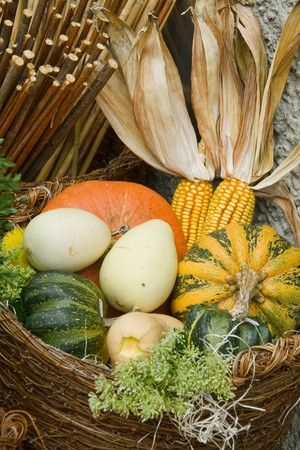Wicker basket full of various pumpkins photo