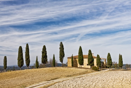 Villa with Mediterranean Cypress trees on clay hills of Crete Senesi, Tuscany, Italy photo
