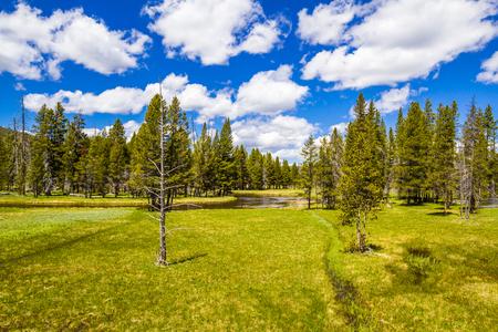 yellowstone: Yellowstone National Park