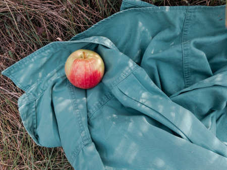 The apple with red side lies on the turquoise shirt on the grass. Photo with cozy atmosphere.
