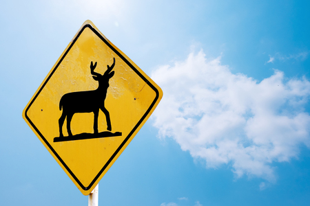 Beware deer crossing the road sign isolated on blue sky background with clipping path included Stock Photo