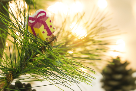 Xmas gift on Christmas tree Stock Photo