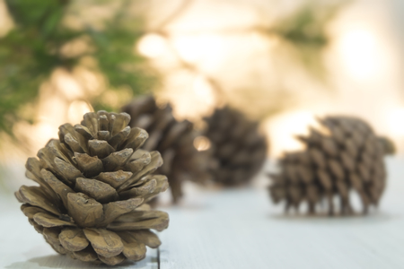 cedro: Pine cones on wooden white table Foto de archivo