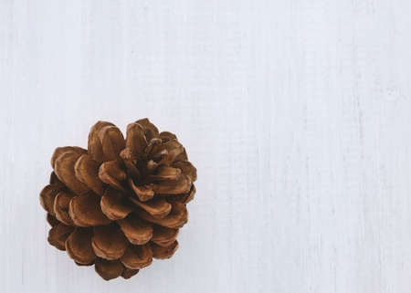 Pine cones on white wooden background Stock Photo