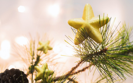 Gold Christmas star on a pine tree for celebration