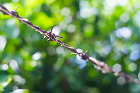 Soft focused on rusty barb wire