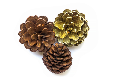 The pine cones are placed on a white background in the left corner ,frame for Christmas and happy new year celebration party Stockfoto