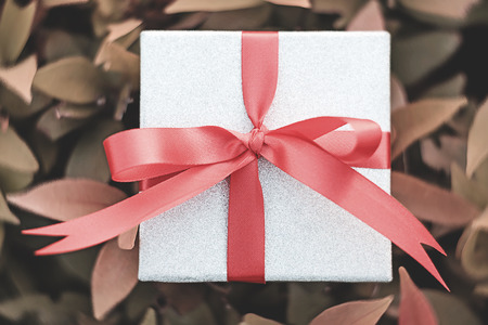 Silver gift boxes tied with red ribbons placed on shrubs orange. Meaningful gifts on special occasions or for a loved one priority.