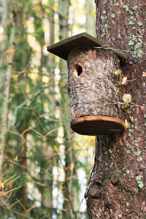 Beautiful bird house affixed to a tree trunk photo