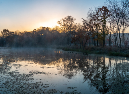 Autumn landscape of early foggy morning in the far east of Russia. Scene in a park of a residential area of the city.