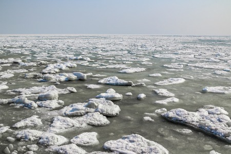Chunks of ice float and melt in a river or lake as a backdrop to the spring landscape