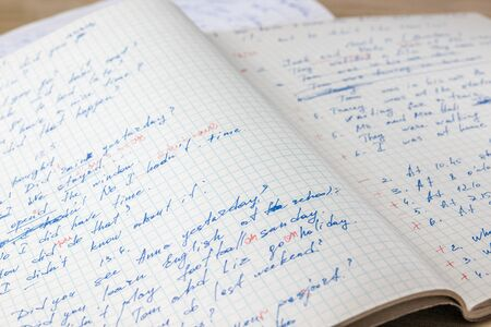 Sheets of school student notebook scribbled with a blue ballpoint pen. Imagens