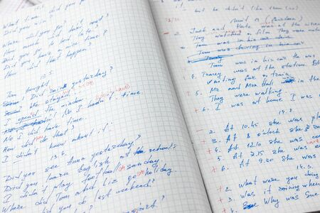 Sheets of school student notebook scribbled with a blue ballpoint pen.