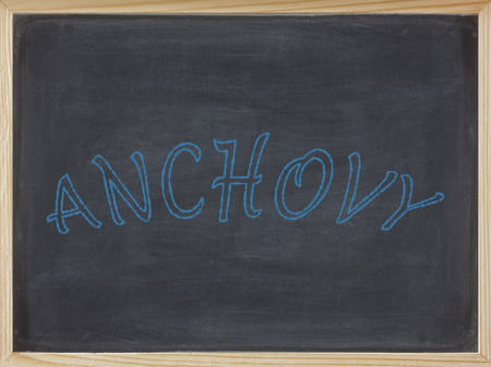 anchovy written in blue on a blackboard to mean a business concept