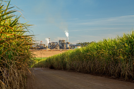 factory sugar cane Zdjęcie Seryjne - 84684631