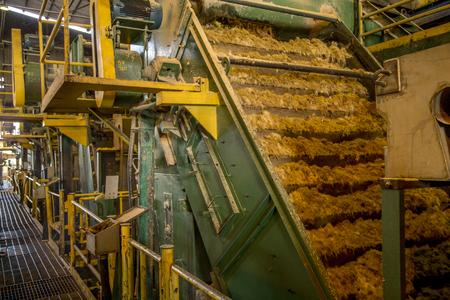 suikerriet lijn Stockfoto