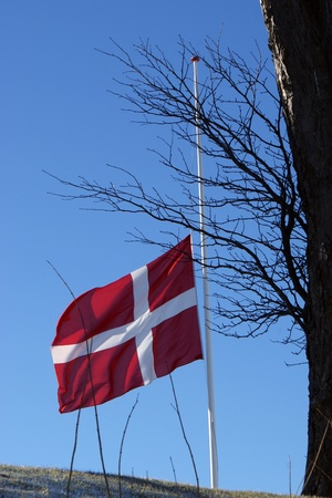 Danish flag swaying on half during burial Stock Photo - 13153743