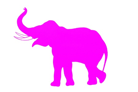 elephant nose: Pink elephant isolated