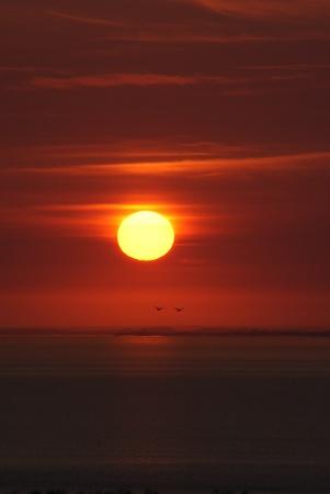 Burning red sunset photo