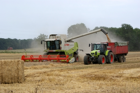 Havester in action loading the tractor with the grain