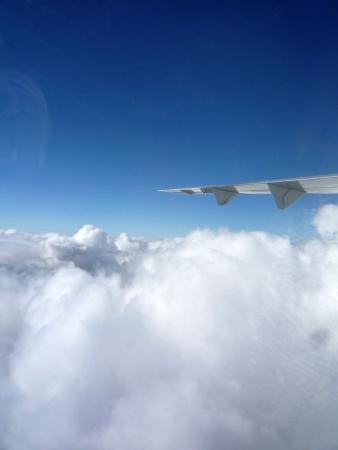 jetplane: Ala di jetplane, hanno un bel volo Archivio Fotografico