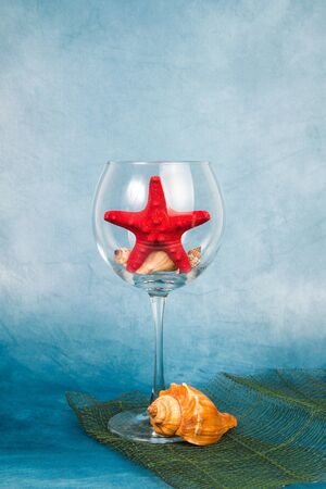 Wine glass with the starfish on a blue background