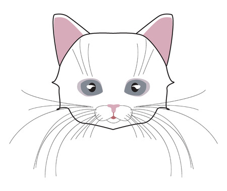 whisker: Cat cute head. Face kitten, whisker and ear, muzzle and wool.