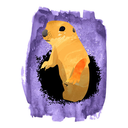 animal Groundhog watercolor hand draw Stock Photo