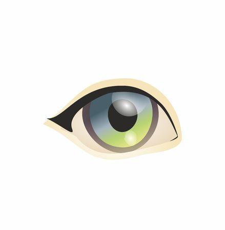 human eye: Eye on white background. Eyes art. Woman eye. Eyes art. Human eye, eye close up Stock Photo