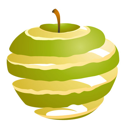 rind: Vector illustration of an apple cutaway skin green Illustration