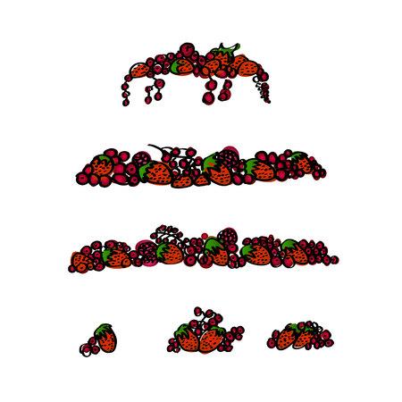 Raspberry fruits. Fresh raspberries set. Vector illustration