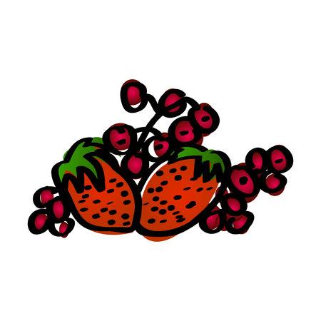 Raspberry fruits. Fresh raspberries Vector illustration Illustration