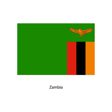 zambia: Zambia flag Illustration