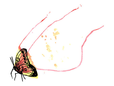 butterflies watercolor