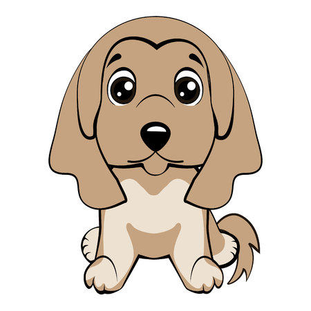 dog Afghan hound breed vector illustration. Illustration