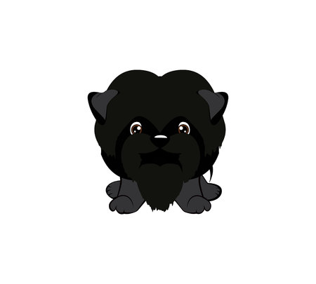 Vector illustration of Angry puppy. dog Affenpinscher sitting. 矢量图像