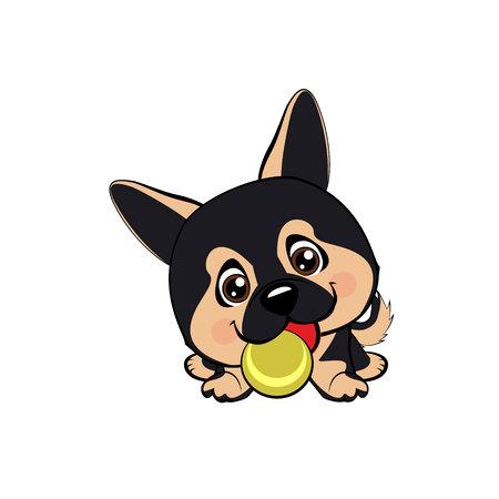 Vector cartoon style drawing of a playful puppy playing with a tennis ball.Australian shepherd cartoon. German Shepherd.