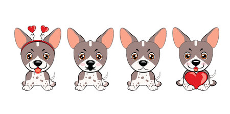 dog American Naked Terrier. set of different little dogs. Grey puppies with different emotions. Ilustração